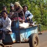 laosbolavenplateau
