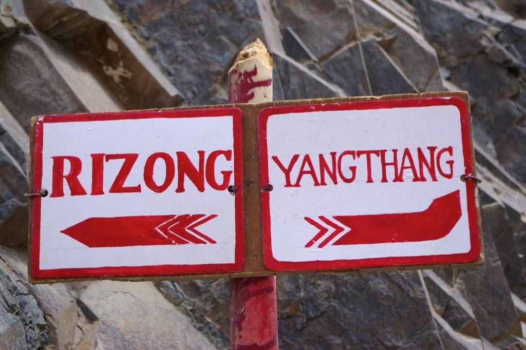 schild-rizong