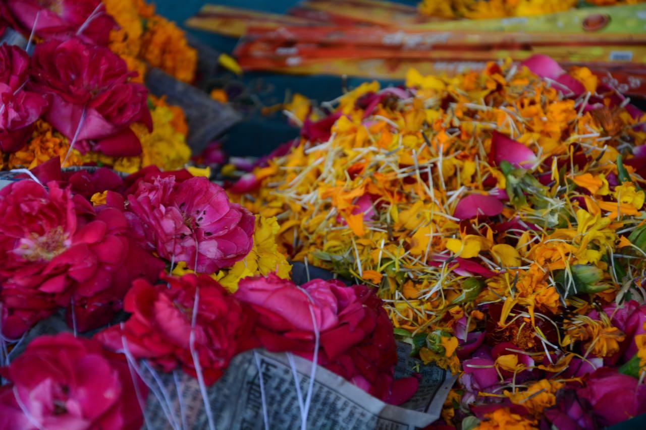 Indien-Liebe-Farbe-5