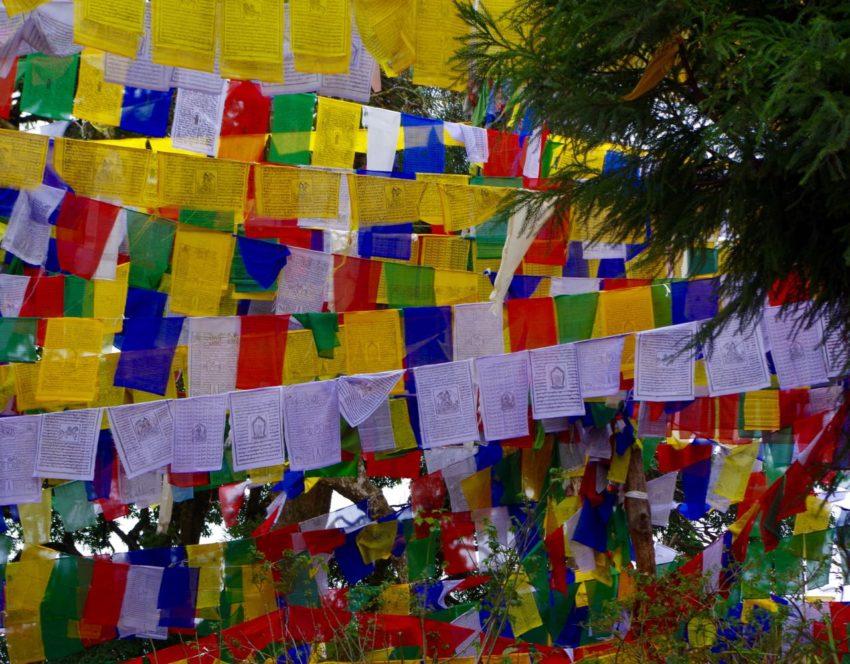 Darjeeling-Prayerflags