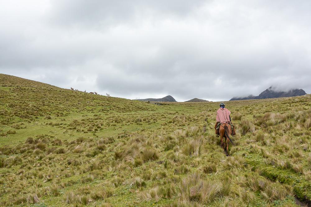 Traveling the World Ecuador Anden Cotopaxi Nationalpark Hacienda El Porvenir Reiten