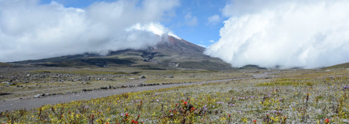 Traveling the World Ecuador Cotopaxi Nationalpark